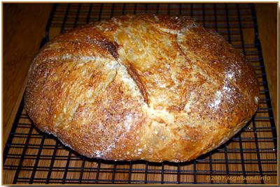 Noknead_bread